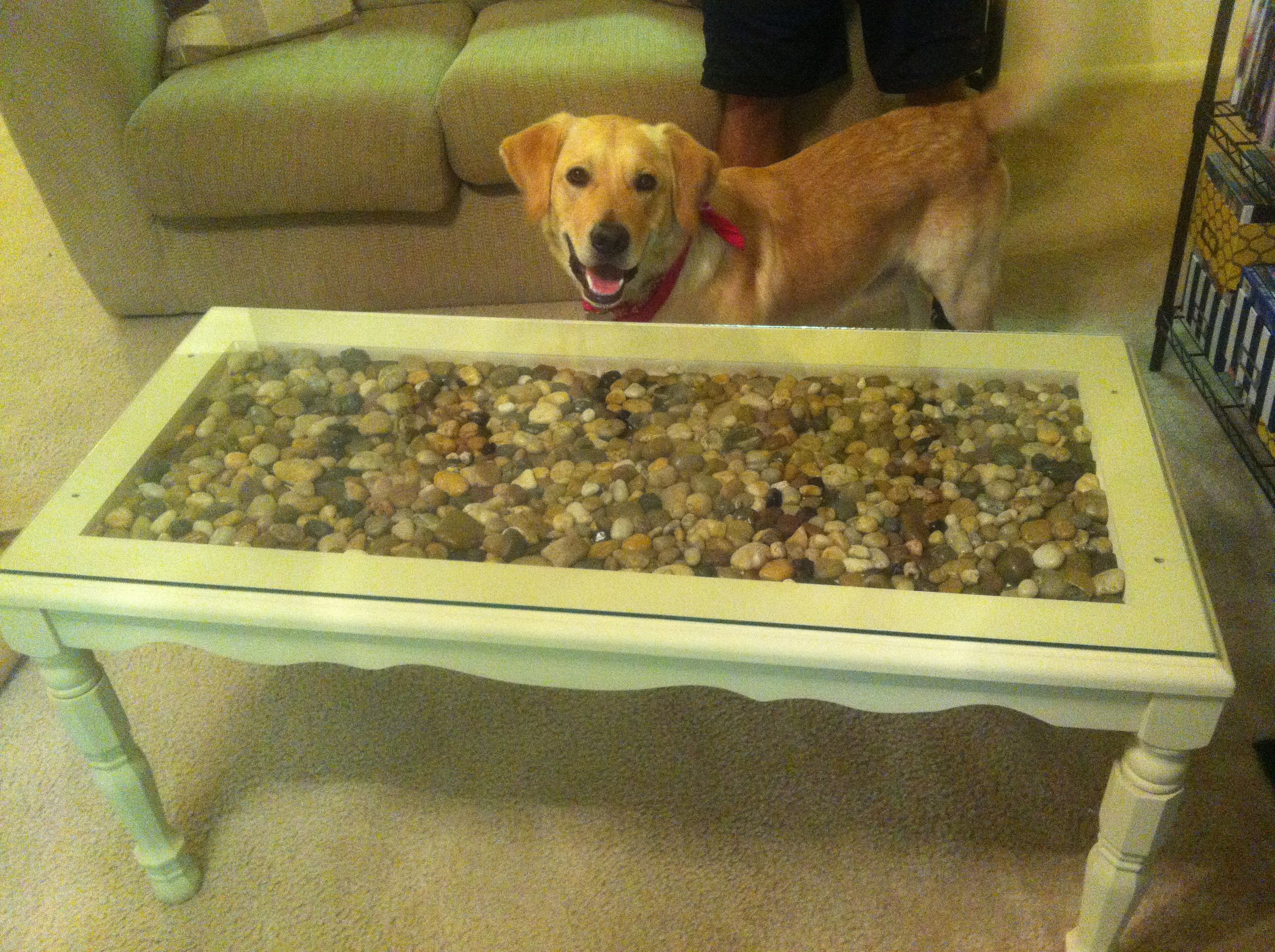 River Stone Glass Top Coffee Table Also Makes Great Entry Way Table Hand Painted And Handmade For Sale For Glass Top Coffee Table Glass Top River Stones