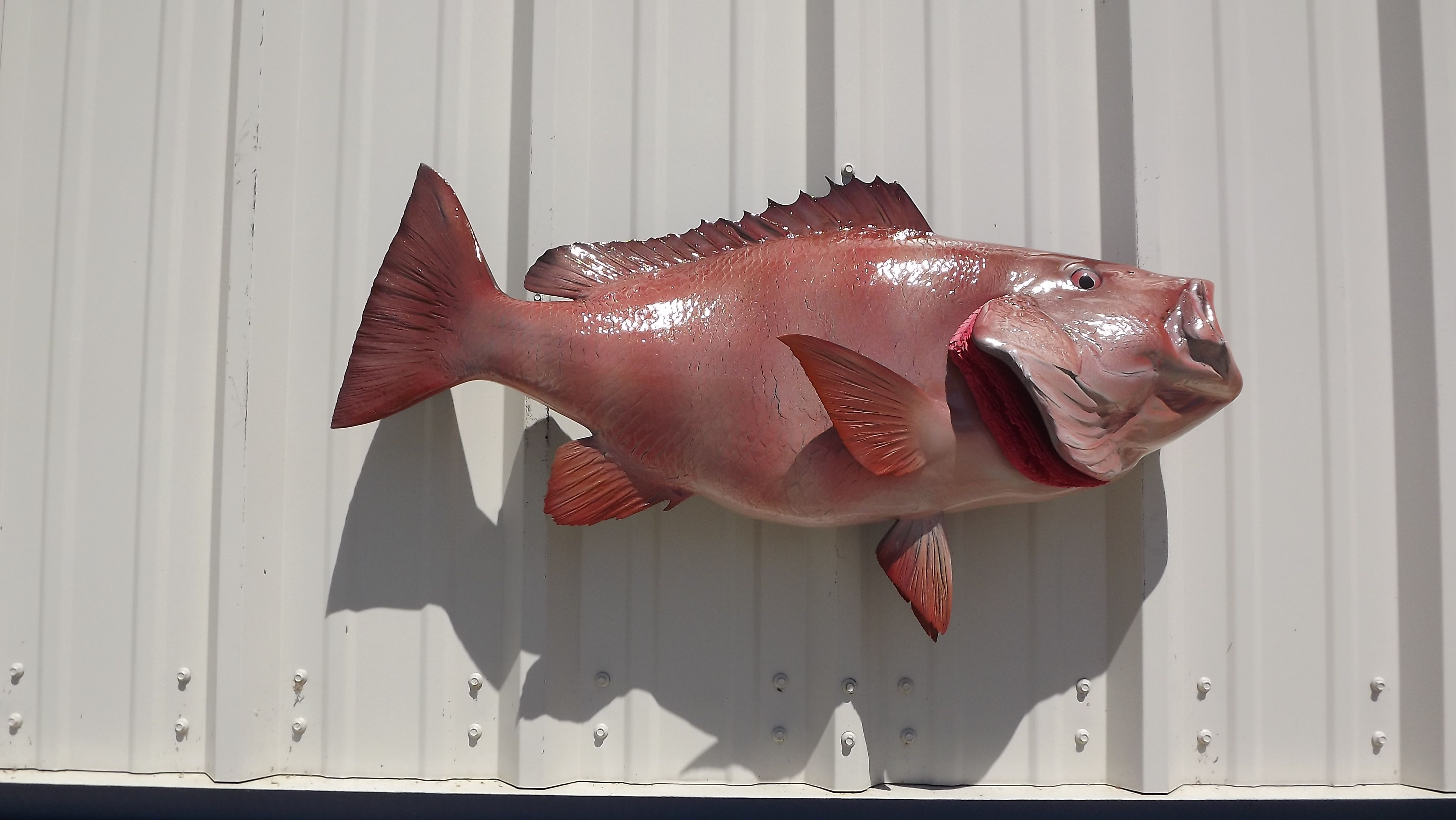 The red snapper has stunning color and is sure to look great with ...