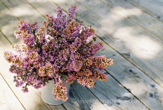 Fall Heather French Country Home Decor Rustic By Lumieredumatin On Etsy French Country House Flower Arrangements French Country Style