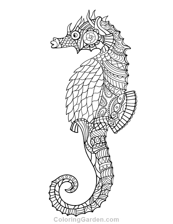 Free printable seahorse adult coloring page Download it in PDF