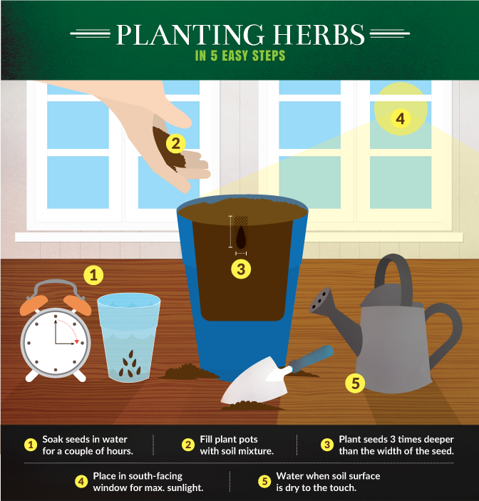 theres a reason why herb gardens are often called kitchen gardens firstly they can be grown right in your kitchen indoors any time of year - Simple Kitchen Herb Garden