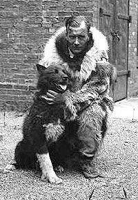 DIPHTHERIA!! Balto was a black, long-haired Siberian Husky that led Gunnar Kassons Dog team in February 1925. Balto led the dog team through a blizzard to reach Nome, Alaska with antitoxin serum for the Diphtheria epidemic that was raging there.  A statue to Balto can still be found today in New York Citys Central Park.