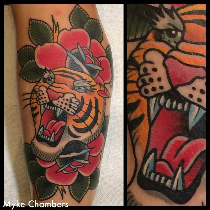 Tattoos animales animals school traditional boston for American traditional tiger tattoo