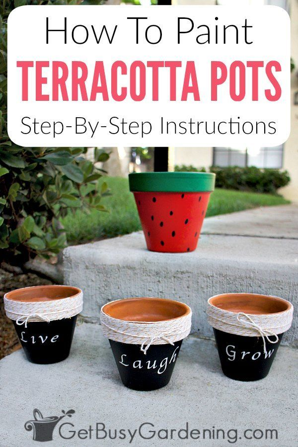 Painting terracotta pots is a fun way to add color to your home or for for outside on the patio or in your gardens Hand painted terracotta planters are perfect for growin...