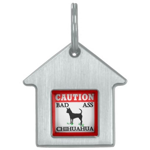 CAUTION ! bad ass Chihuahua /dog tag