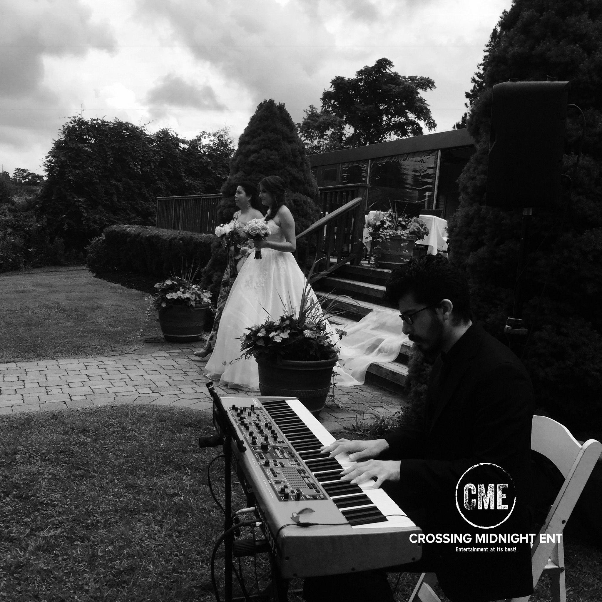 Wedding, Concert, Reception