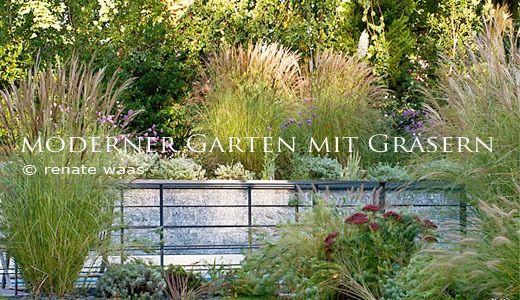 Moderner-Garten_Graeser_mit-Graesern_Blumenbeet Garten - moderner garten mit grasern