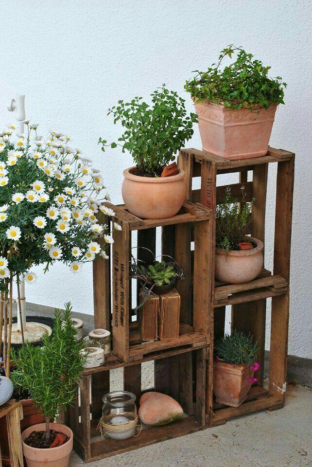 Photo of #auf #Holzkisten #Kräuter #Topfpflanzen #und Topfpflanzen und Kräuter in und a…