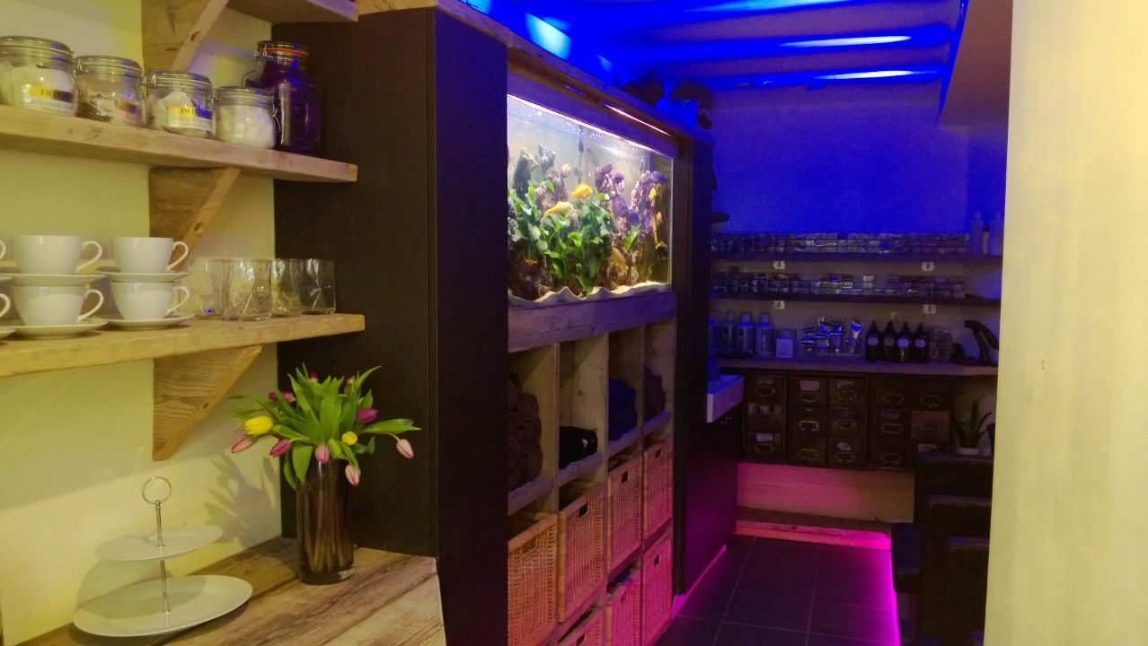 Colour changing led lighting at Samuel David Hair Salon #hair #haircolour #fishtank #sdhairdressing #bristol