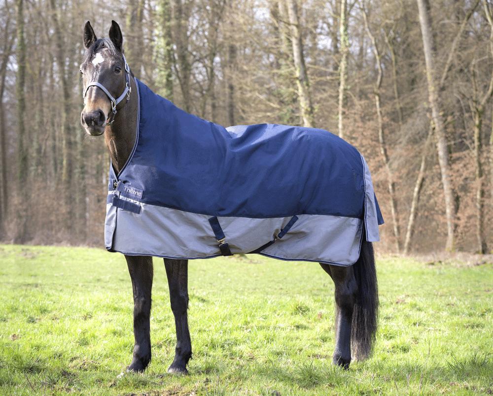 Pferdedecken : Equi-Théme Highneck Regendecke Tyrex ...