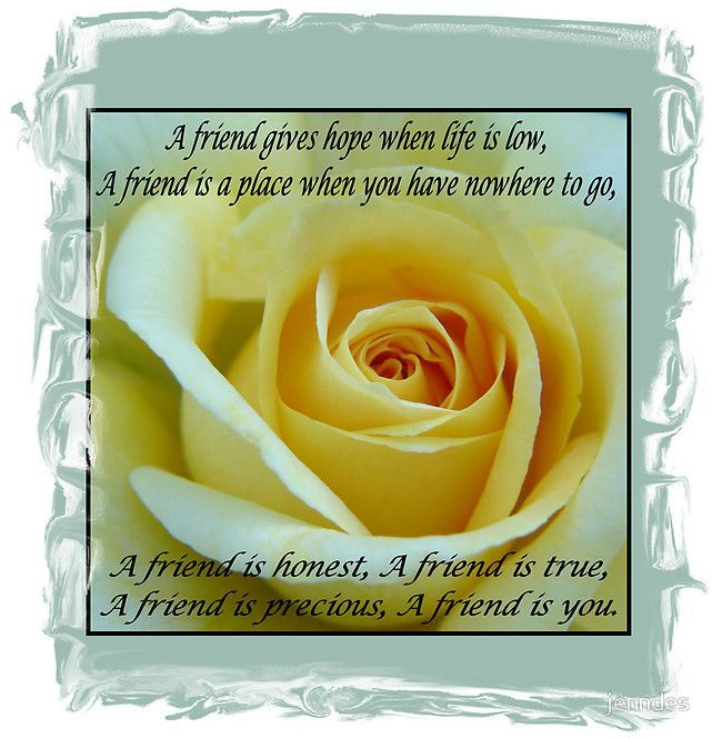 Yellow Rose with Friendship Poem.  Photo and Design by Jennifer Desbiens