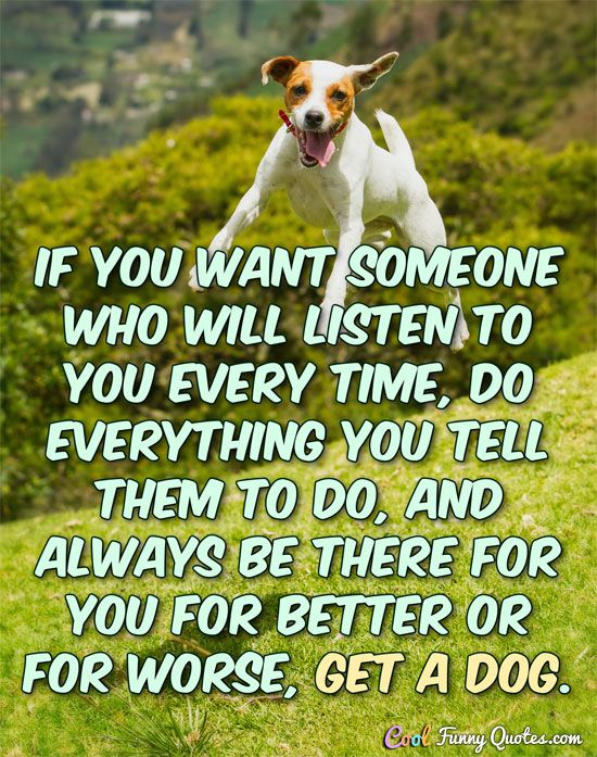 Funny Quote Funny Quotes Be Yourself Quotes Dogs