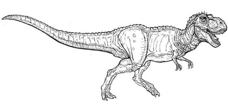 Coloring Pages For Jurassic World Blue Jurassic World Jurassic World Indominus Rex Super Coloring Pages
