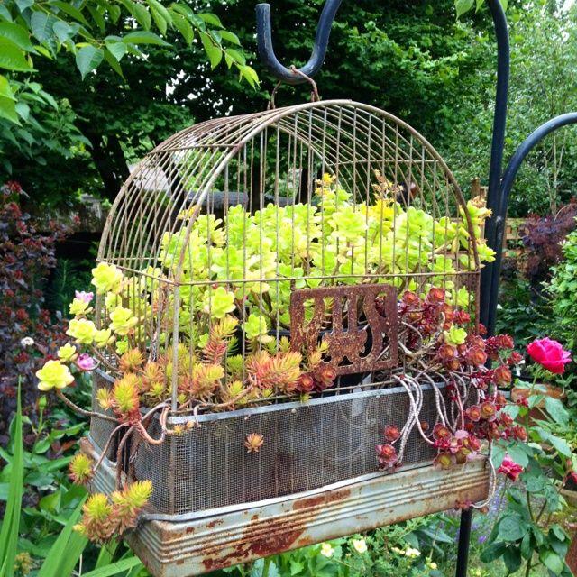 Using bird cages in gardens garden bird cage filled with for Garden cage