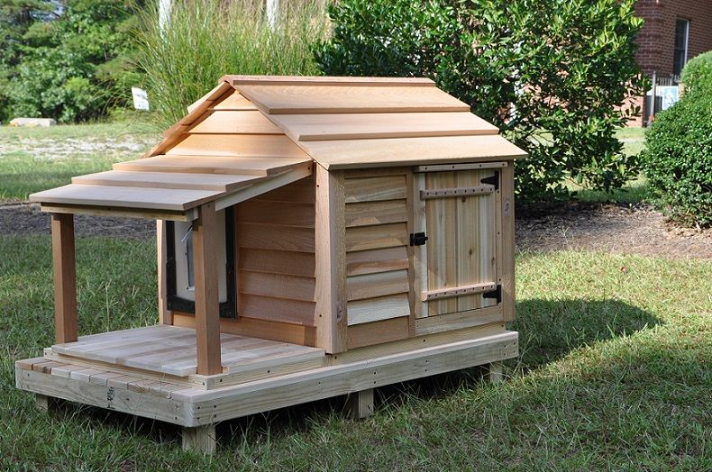 Medium Dog House Cats House Multi Cats Cool Dog Houses Dog