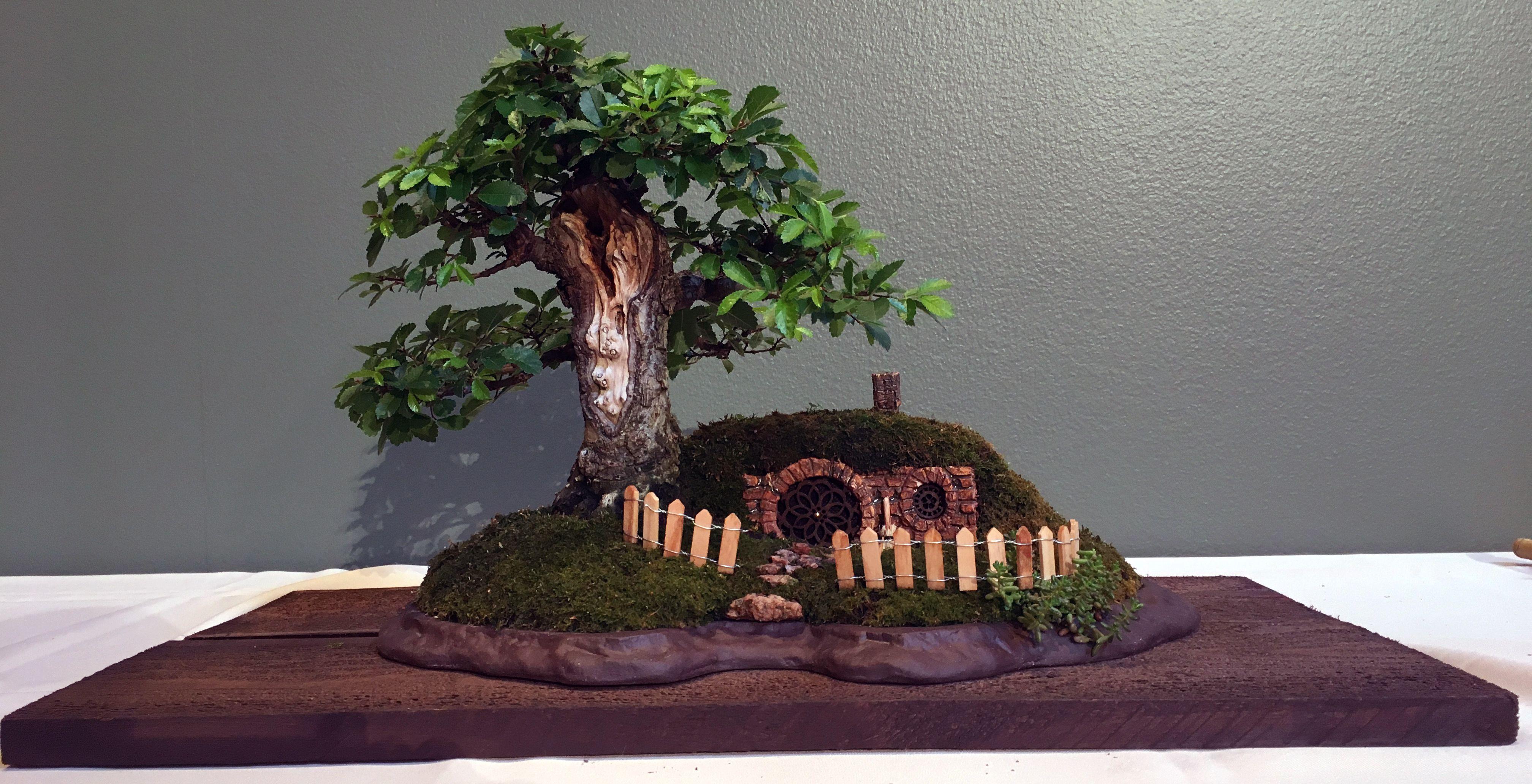 Pin Di 2016 39th Mid America Bonsai Exhibit
