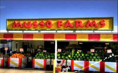 Musso Farms Chili S Are Delish Farm Pueblo Colorado Pueblo