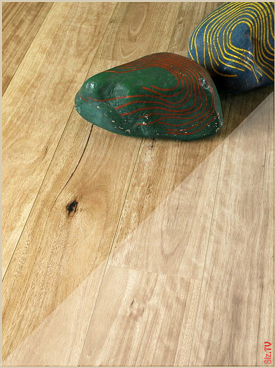 Blackbutt Laminate This Beautiful High Definition Laminate Flooring Is From Belgium And Available Now Laminate Flooring Flooring Installing Laminate Flooring