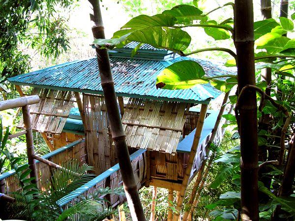 The Bamboo Treehouse Puerto Rico Trip Pinterest Amable, Vaca y - casas en arboles