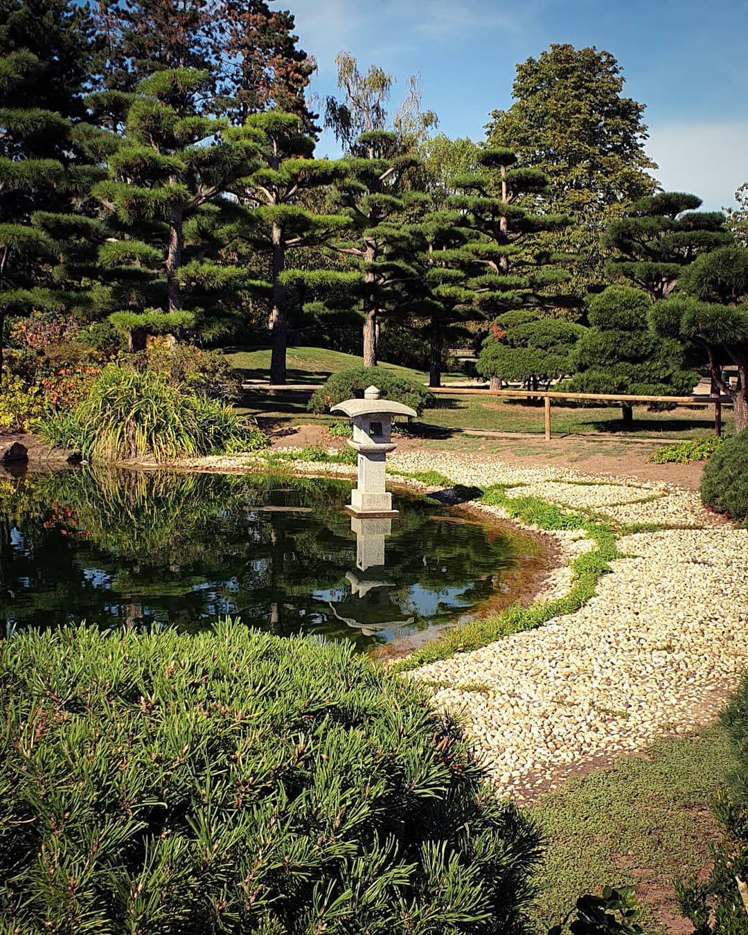 Japanese Garden Dusseldorf Germany Japanesegarden Gardendesign Orientaldesign Parkdesign Nature Greenzone Japanesestyl Japanischer Garten Garten Japan