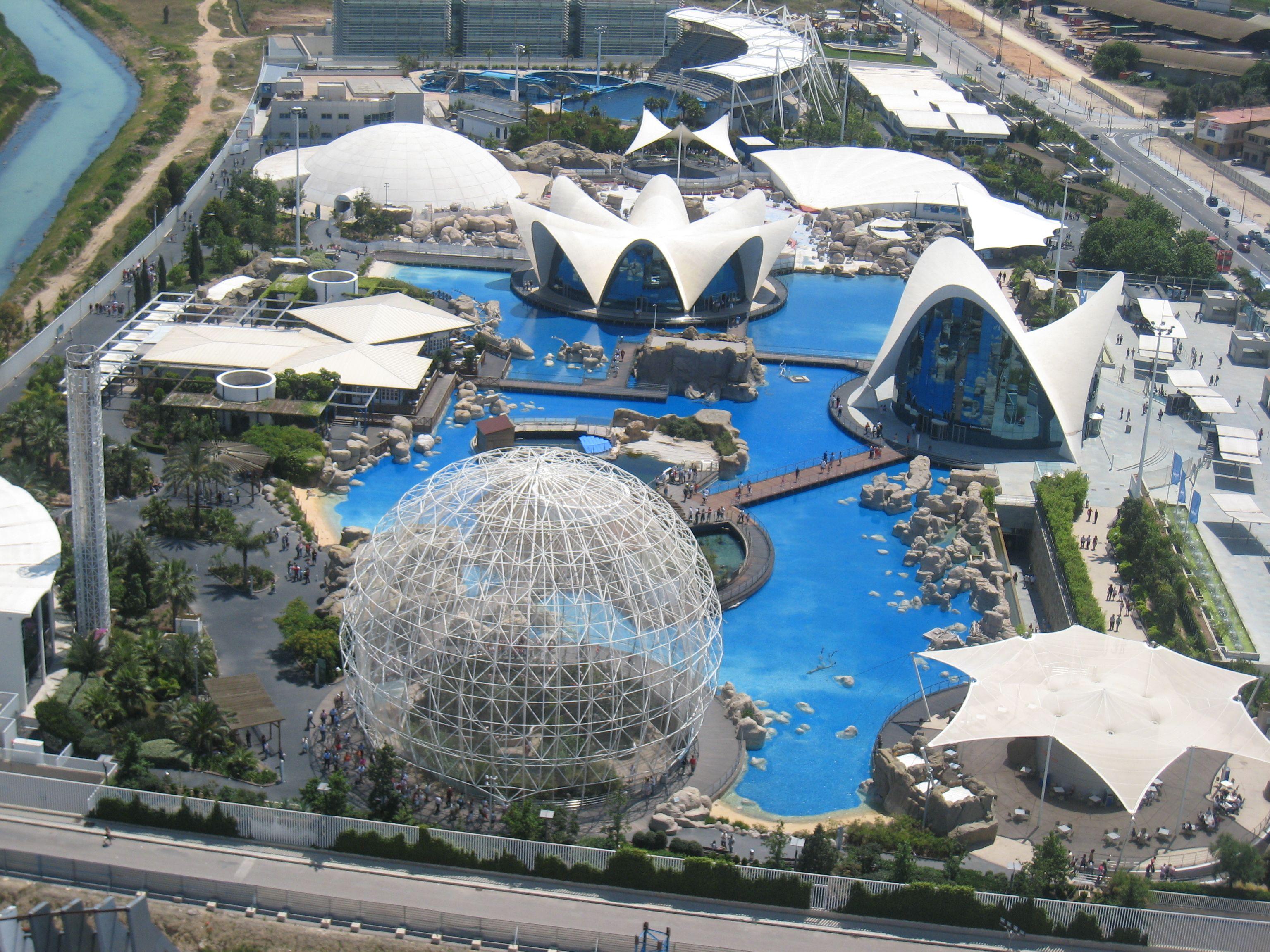 Spain valencia l oceanografic aquarium valencia for Aquarium valencia precio