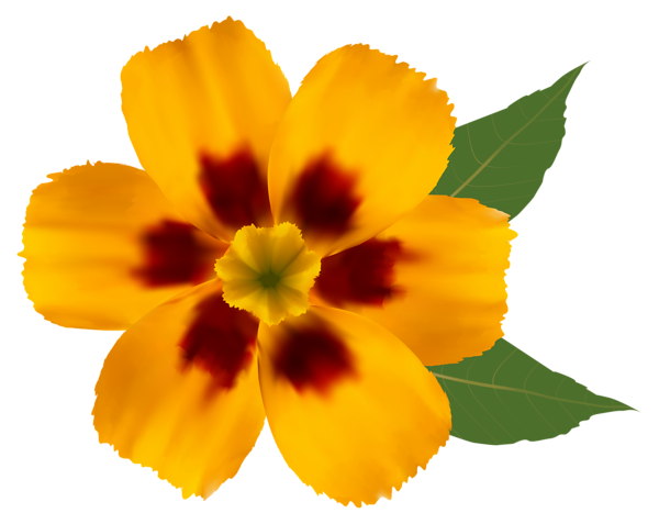 Yellow Flower PNG Clipart Image