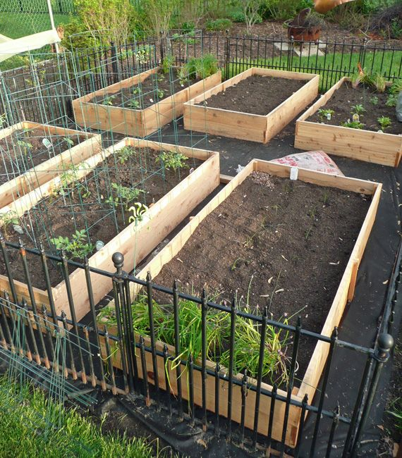 Vegetable Garden Box DIY Garden boxes Vegetable garden and Gardens