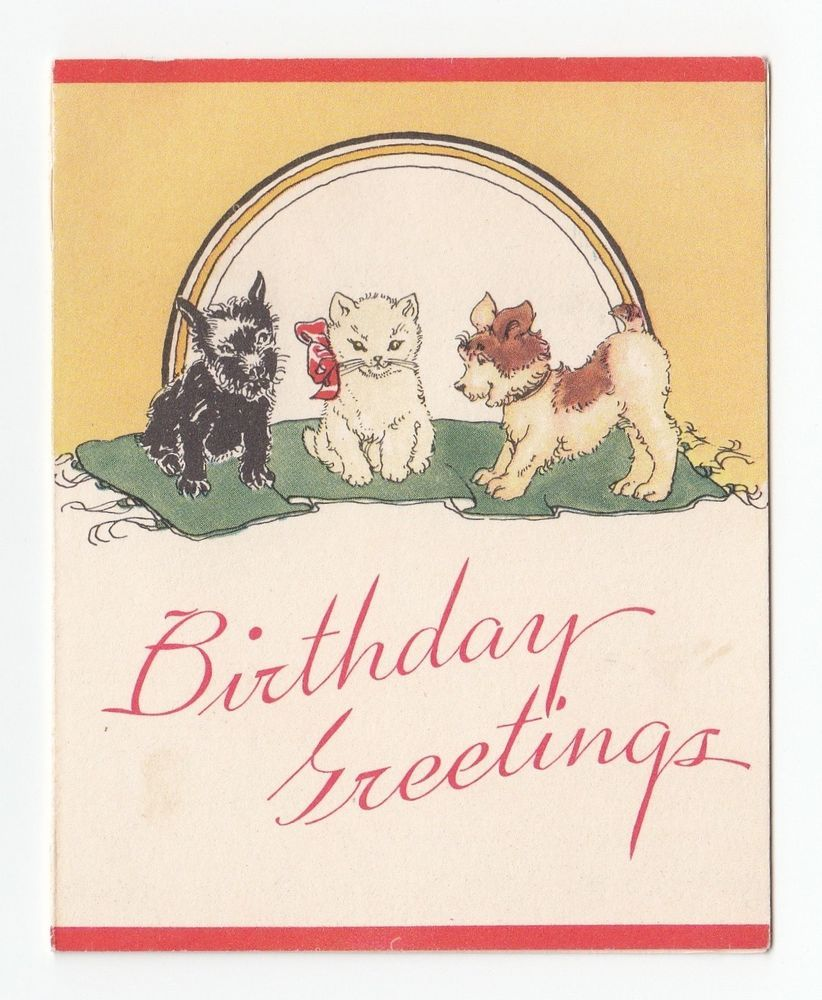 Vintage Greeting Card Scotty Dog Puppy Kitten Cat Birthday Greetings