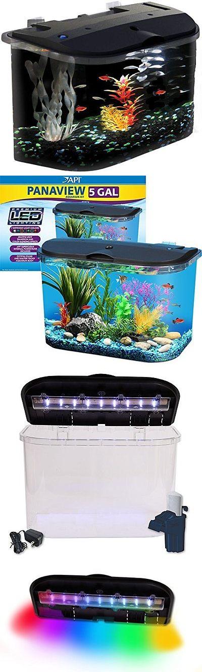 Aquariums And Tanks 20755 5 Gallon Acrylic Desktop Fish Tank Aquarium Filter Kit Led Lights Home Reef Pet Buy It Now Only 56 09 On Ebay