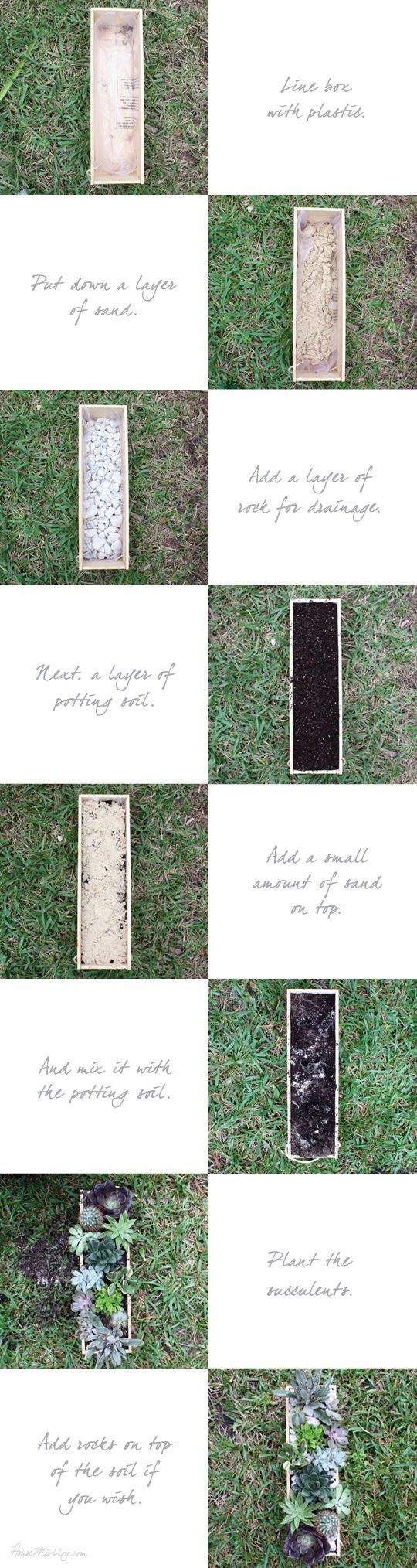 How to plant a succulent centerpiece in a wood box