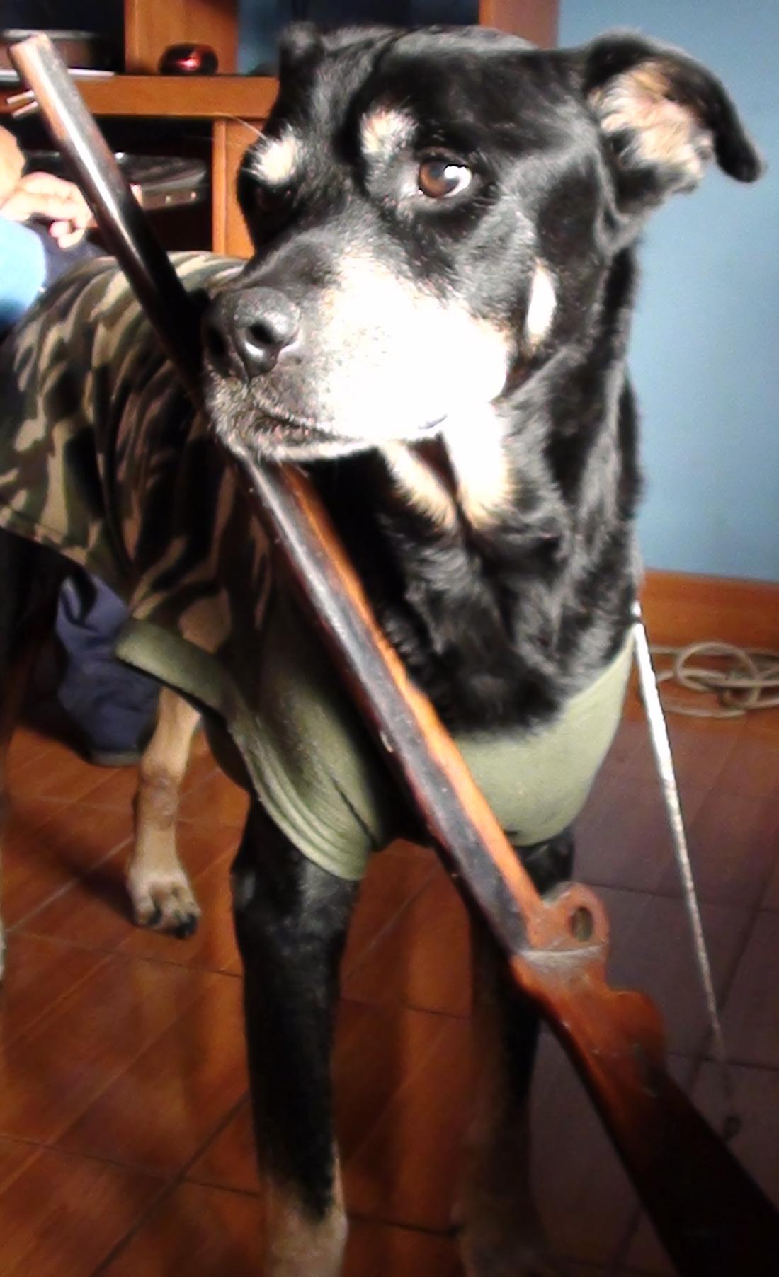 soldier!