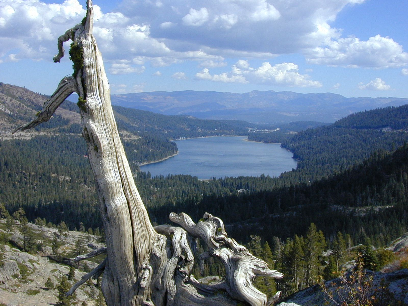 View Of Donner Lake From Donner Pass Hiking Trail Donner Lake Hiking Trails Lake