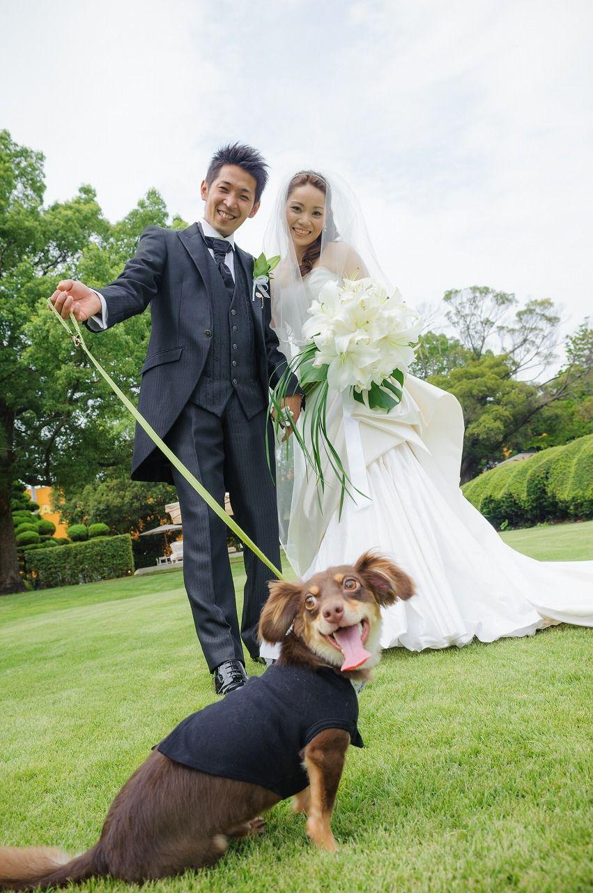 愛犬と一緒のウェディング Garlands おとなナチュラルwedding 結婚式 ペット ウェディング ウエディングフォト