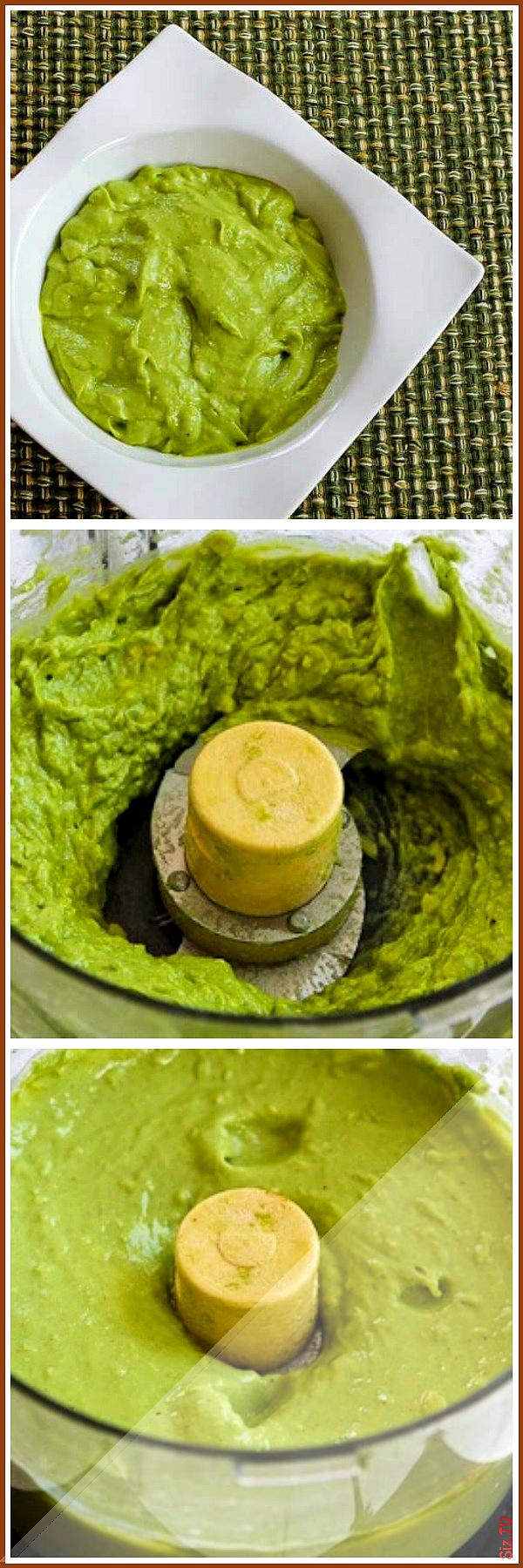 Ultra Easy Avocado Sauce or Dip And Ten Suggestions for Using It Ultra Easy Avocado Sauce or Dip An