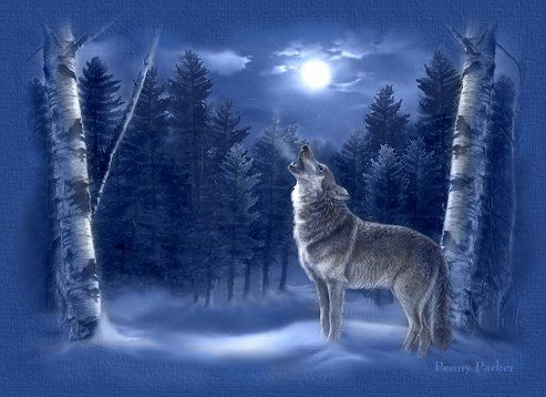 pics of wolves howling at the moon | Few Facts About ...