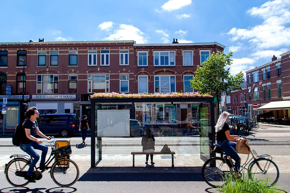 Over 300 Bus Stops in Utrecht Were Converted into Bee