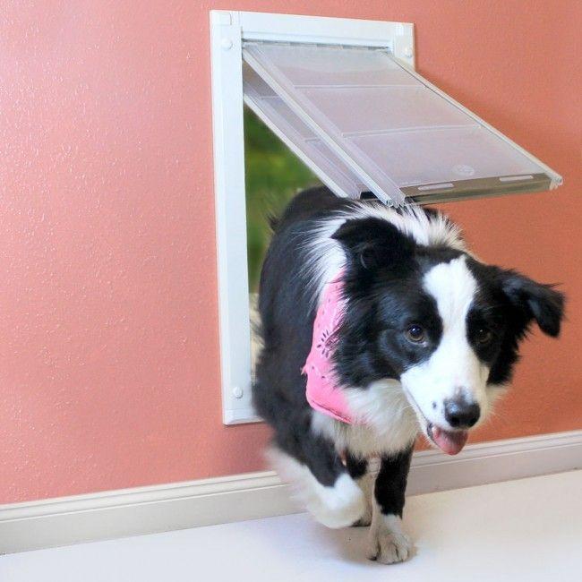 Endura Flap Pet Door For Walls Dog Doors Животные