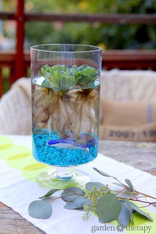 An Eerily Beautiful Indoor Water Garden Indoor Water Garden