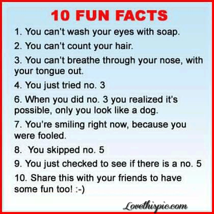 10 Fun Facts Funny Quotes Quote Jokes Lol Funny Quote Funny