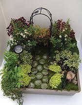 Resultado de imagem para fairy gardens
