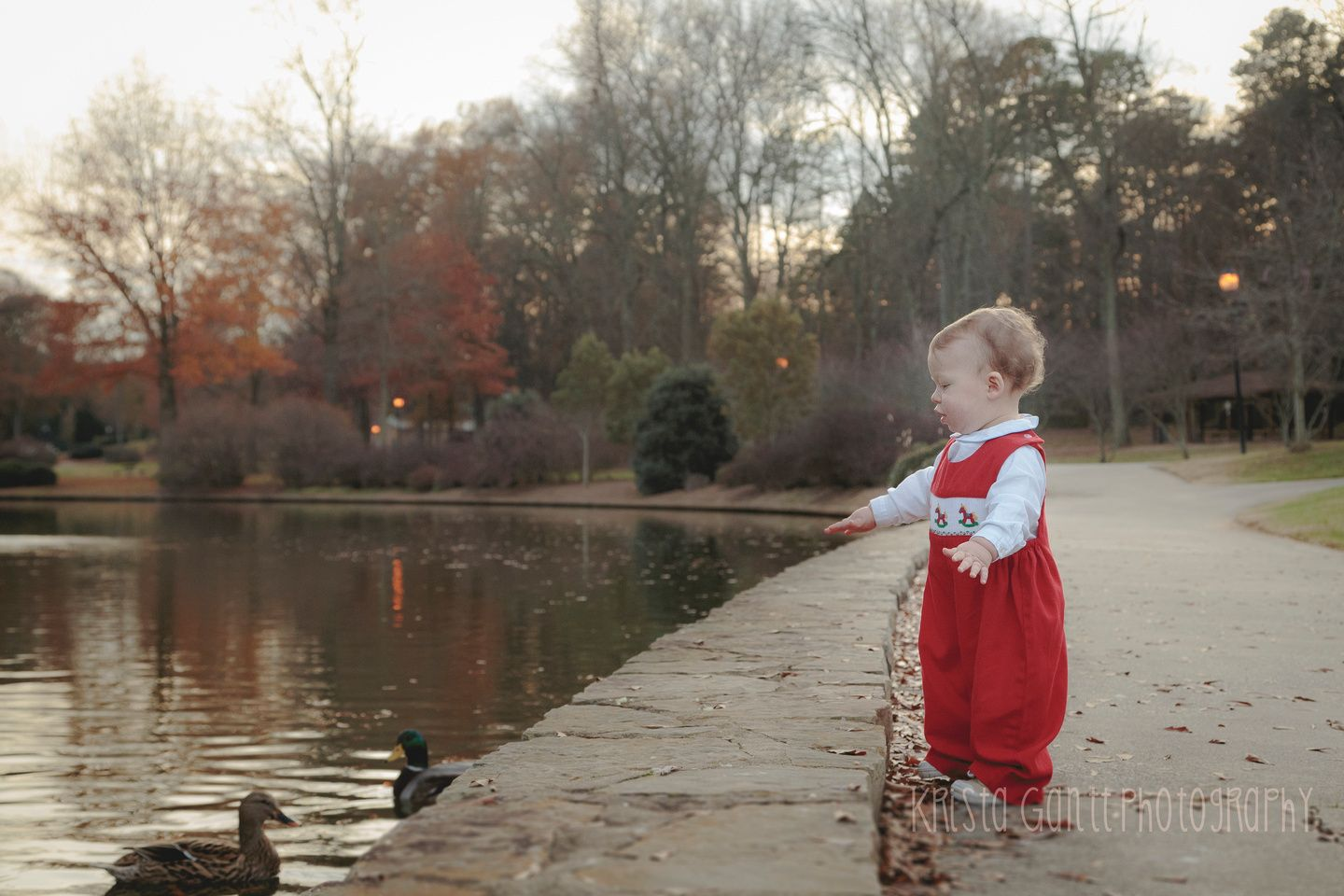 Christmas Baby Turned 1 Year Old Angel Photographing Babies Family Photographer 1 Year Olds