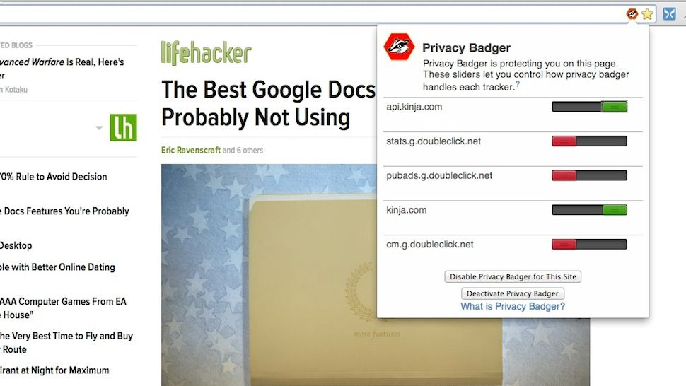 Privacy Badger WIndow