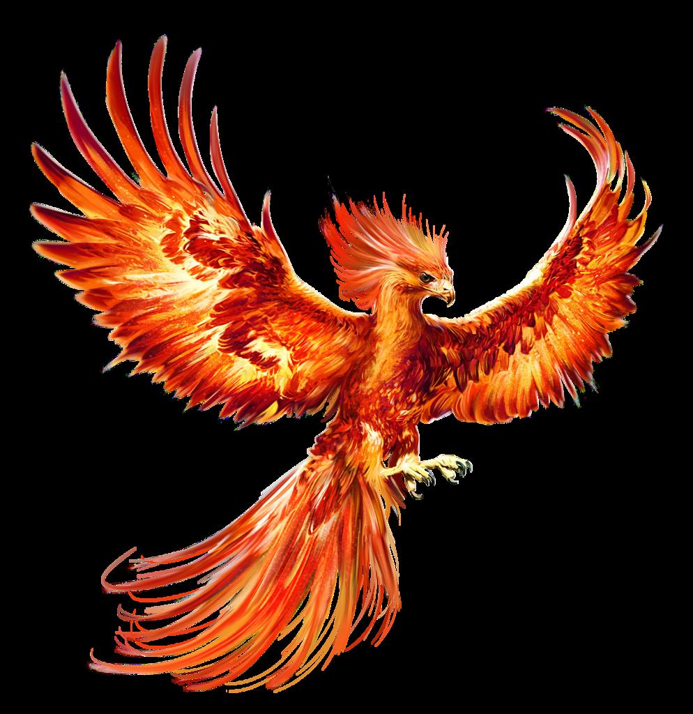 Epingle Par Diego Rios Sur Animaux Dessin Phoenix Dessin Phenix Phenix Tattoo