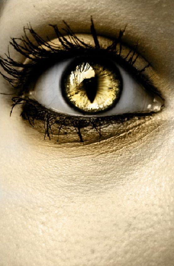 Golden Eyes My Apparent Nickname Gold Eyes Golden Eyes Eye Art