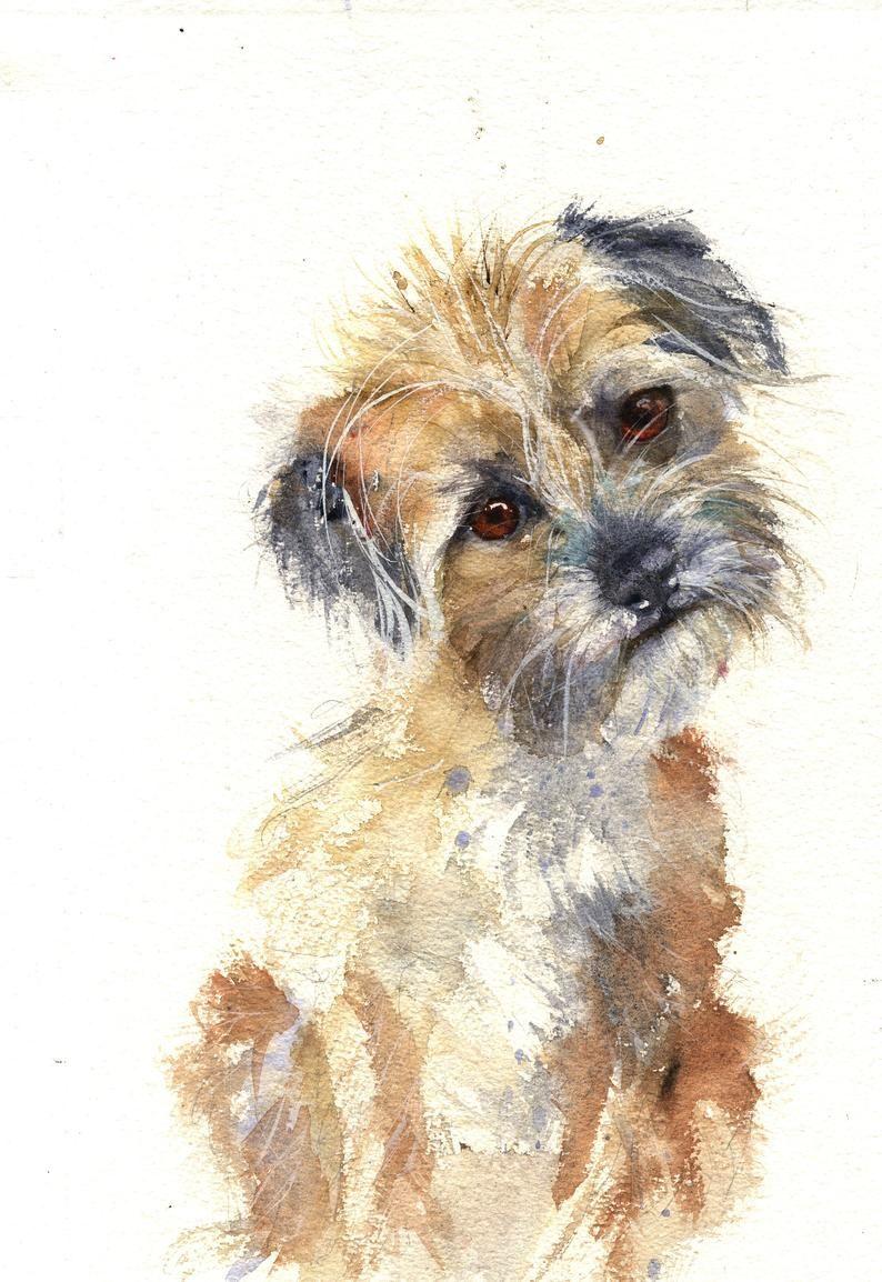 Border Terrier Poppy Dog Print Watercolour Etsy In 2021 Dog Art Watercolor Dog Border Terrier