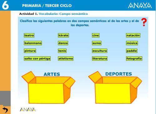 Vocabulario Campo Semantico Sustantivos Plurales Vocabulario
