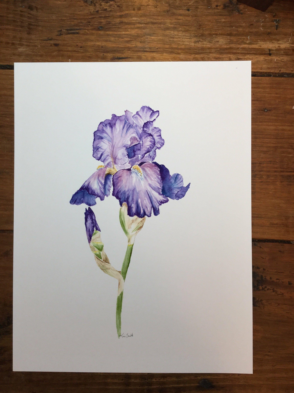 Watercolor Purple Iris 2 Etsy Purple Flower Tattoos Iris Painting Iris Flower Tattoo