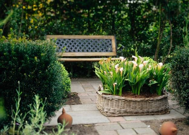 Pin On Beautiful Gardens And Ideas