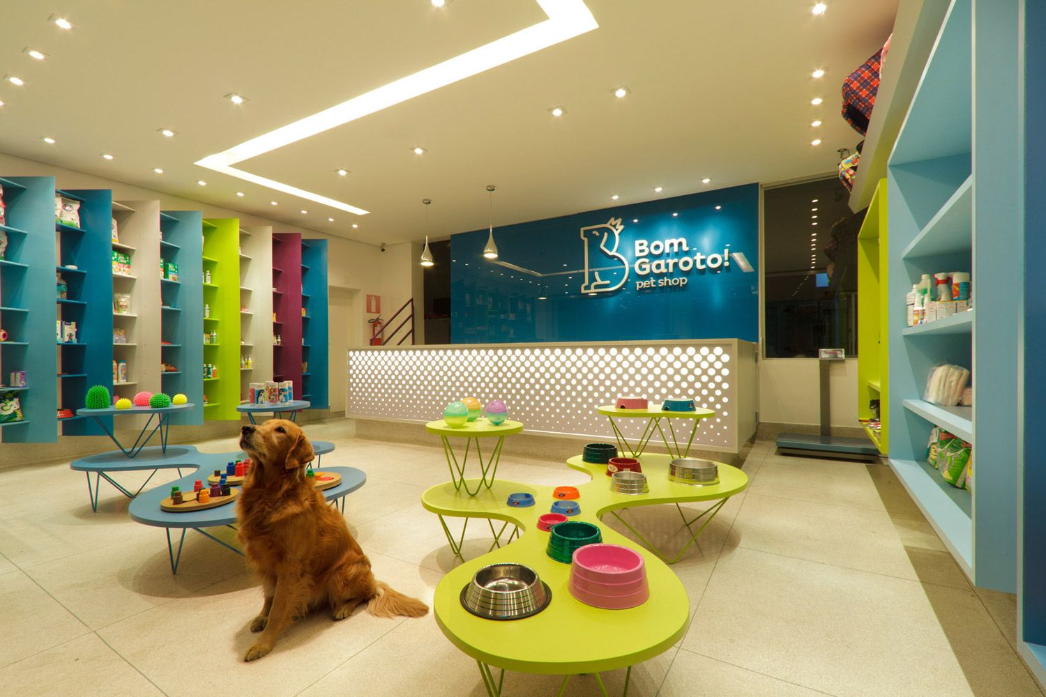 Boutique Dog Hotel
