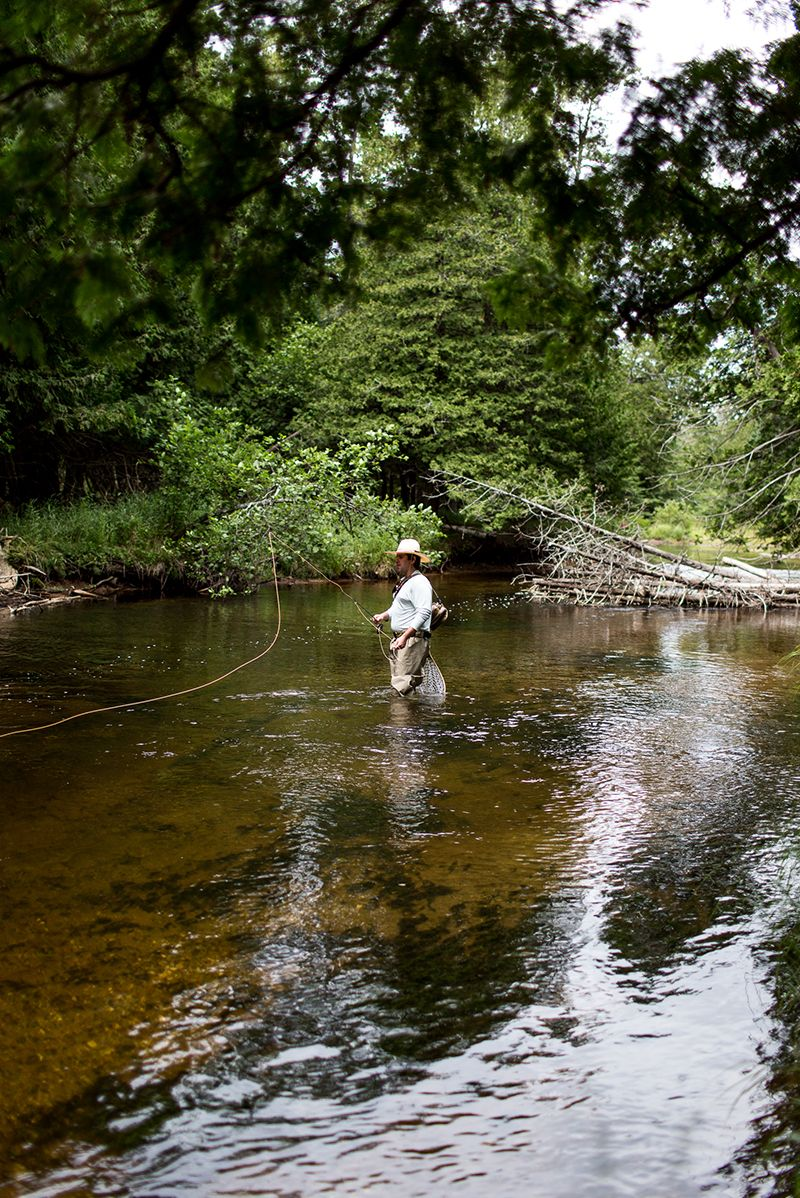 Fly Fishing The Maple River Northern Michigan Fly Fishing Michigan Travel River